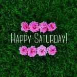 Happy Saturday Quotes Images Funny Love - Good Morning Saturday